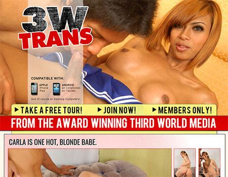 3wtrans review